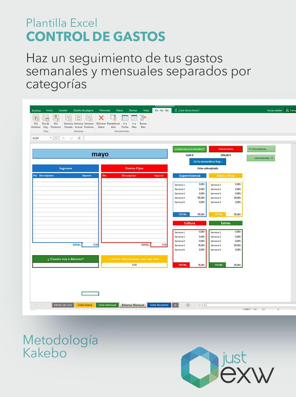 Plantilla Premium Control de Gastos | Plantilla de Excel para gastos