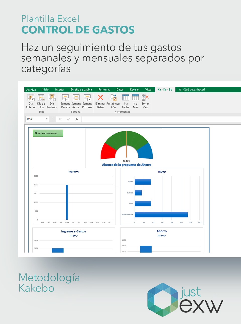 Plantilla Excel Control gastos ingresos economía doméstica | Just EXW