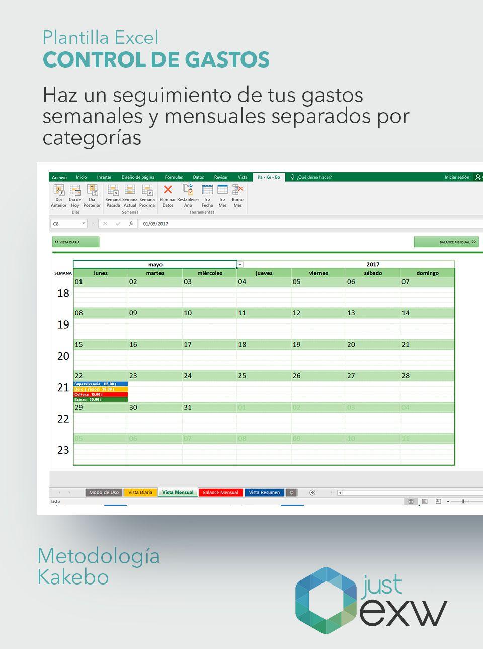 Plantilla Excel Control Gastos e Ingresos | Just EXW